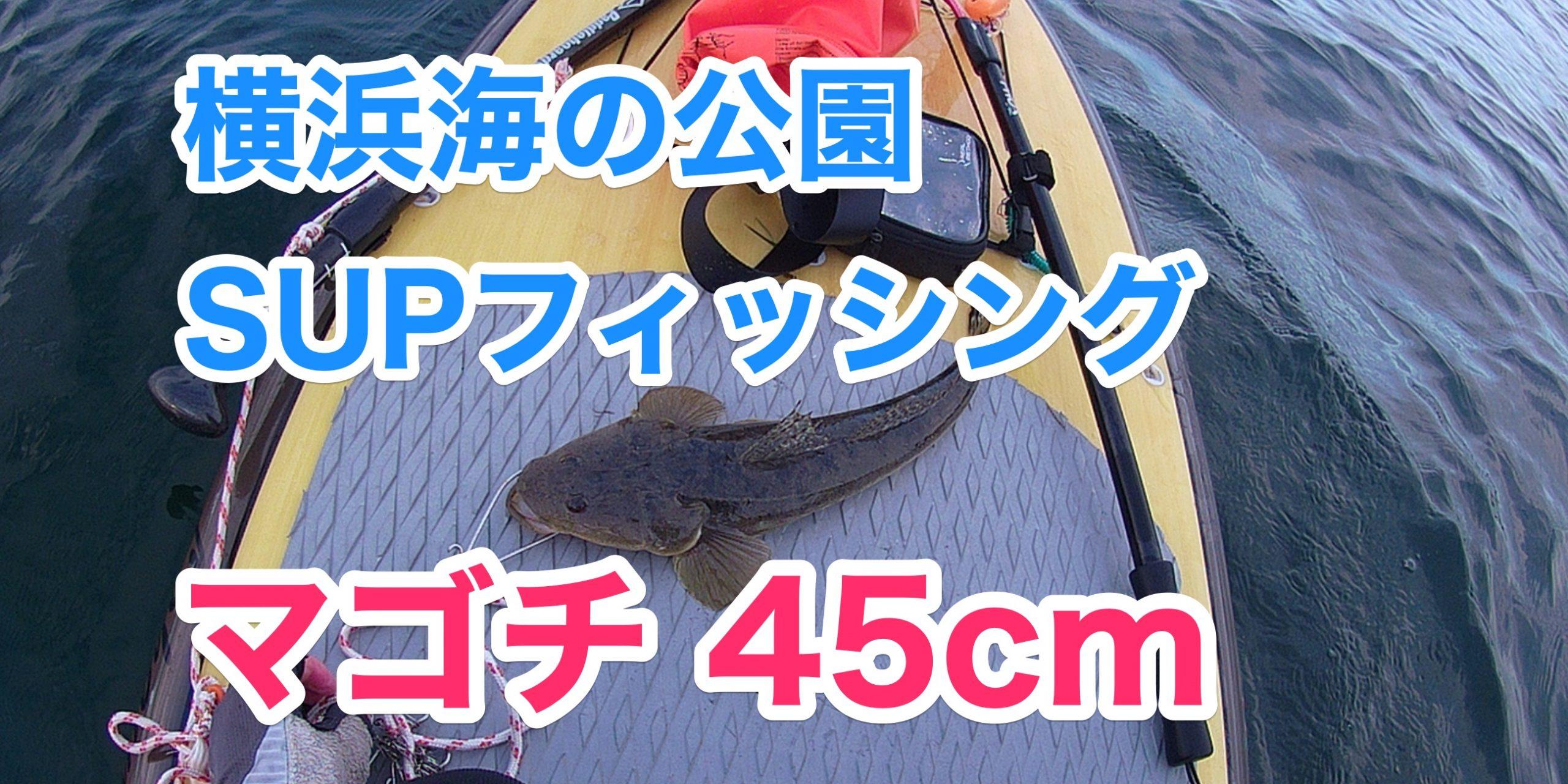 【マゴチ45cm】SUPフィッシング@横浜海の公園20210523
