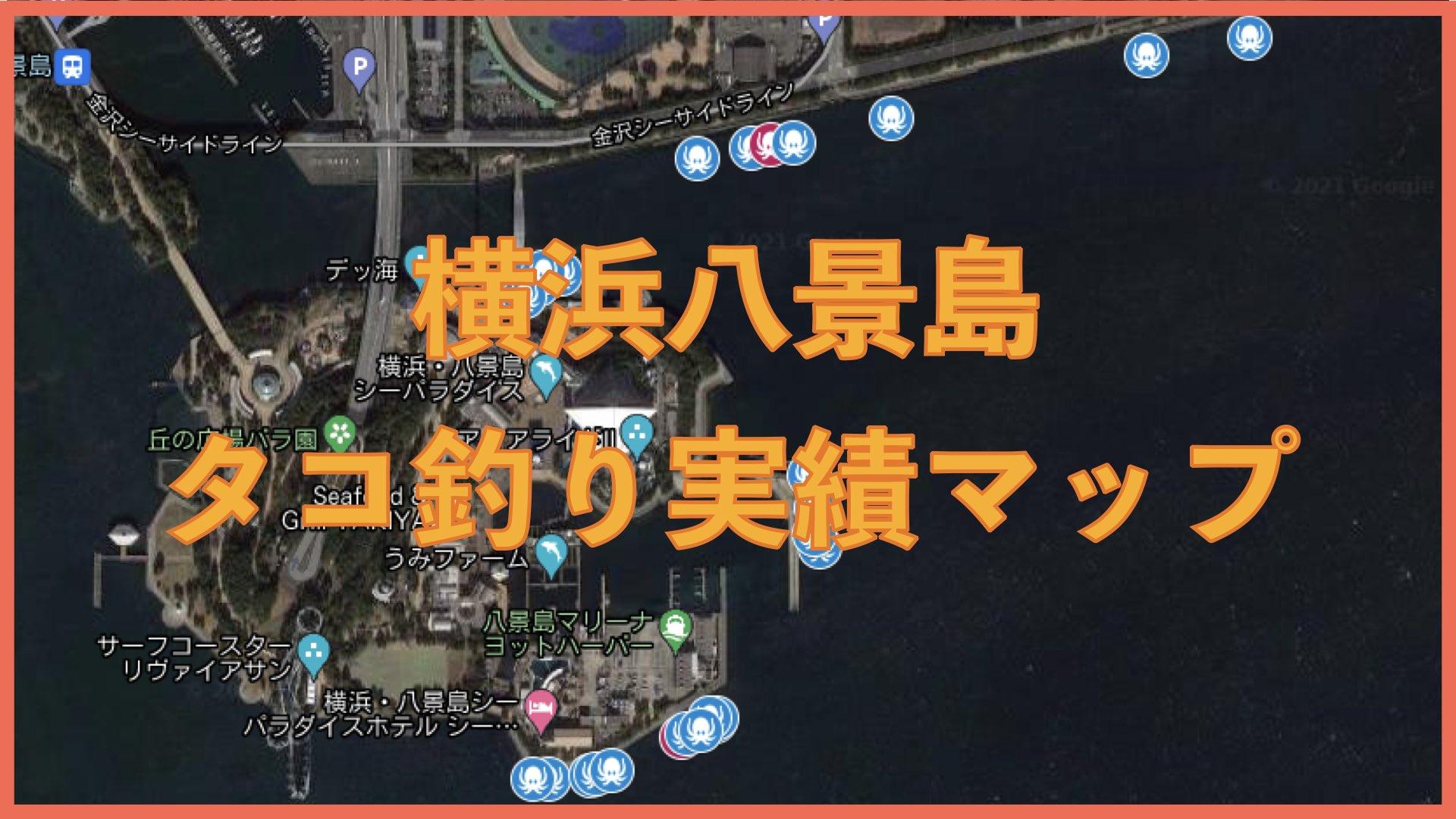 横浜八景島タコ釣り実績マップ