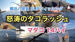 【タコ14ハイ】SUPフィッシング@横浜八景島20210723