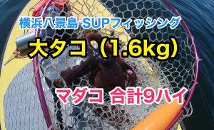 【大タコ1.6kg】SUPフィッシング@横浜八景島20210717