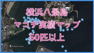 横浜八景島マゴチ実績マップ