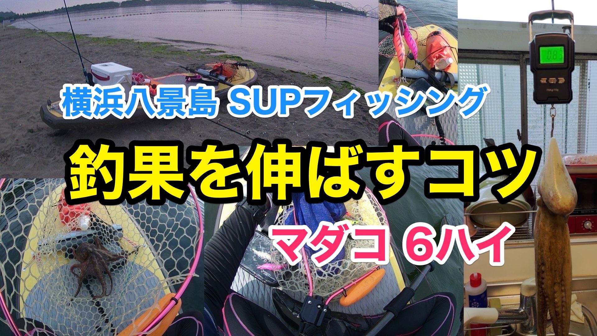 【タコ6ハイ】SUPフィッシング@横浜八景島20210824