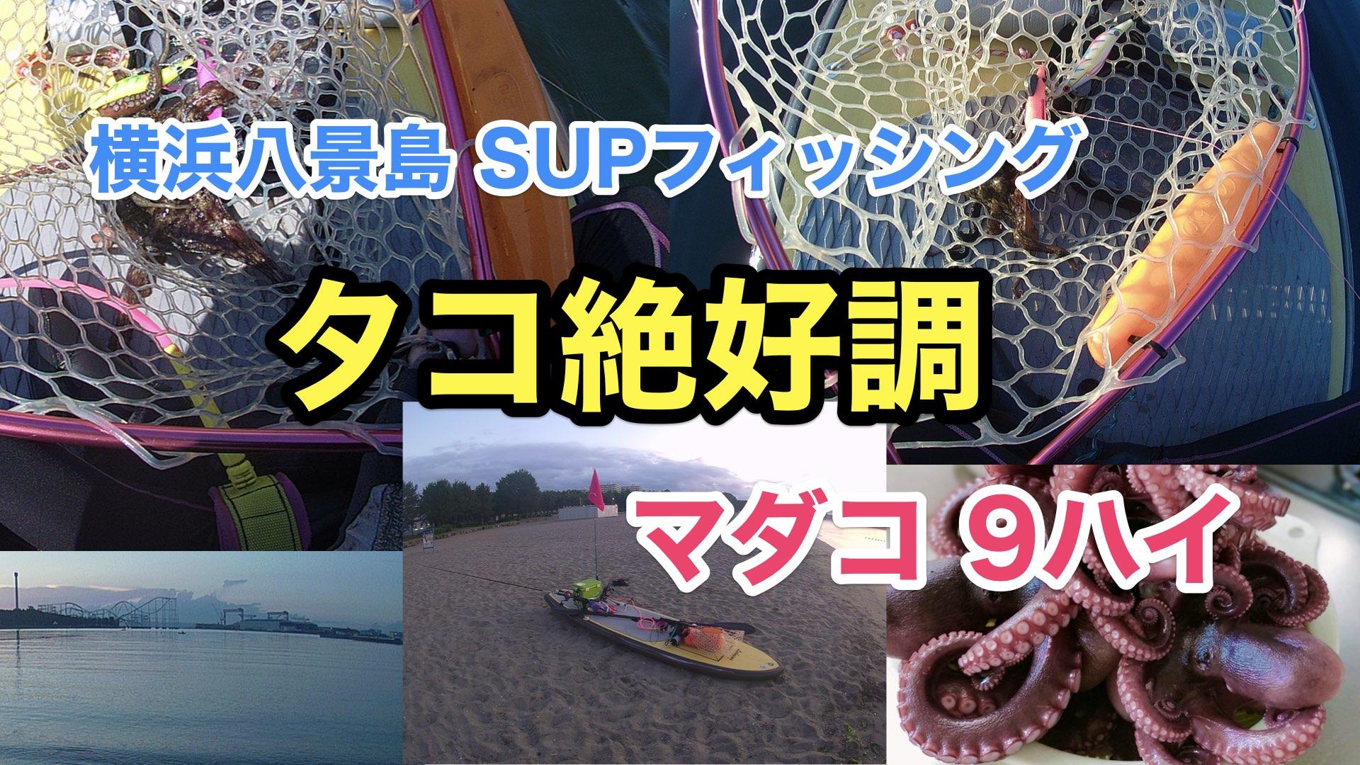 【タコ9ハイ】SUPフィッシング@横浜八景島20210724